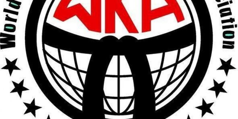 WORLD CUP WKA - Sponsorzy