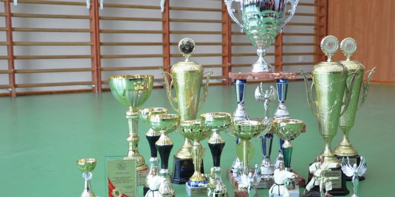 Otwarte Mistrzostwa Europy WFMC - Nasi walczą o medale
