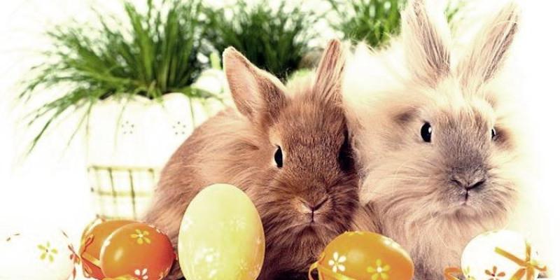 Przerwa w treningach w okresie Świąt Wielkanocnych
